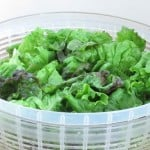 Lettuce – Salad staple do's and don'ts