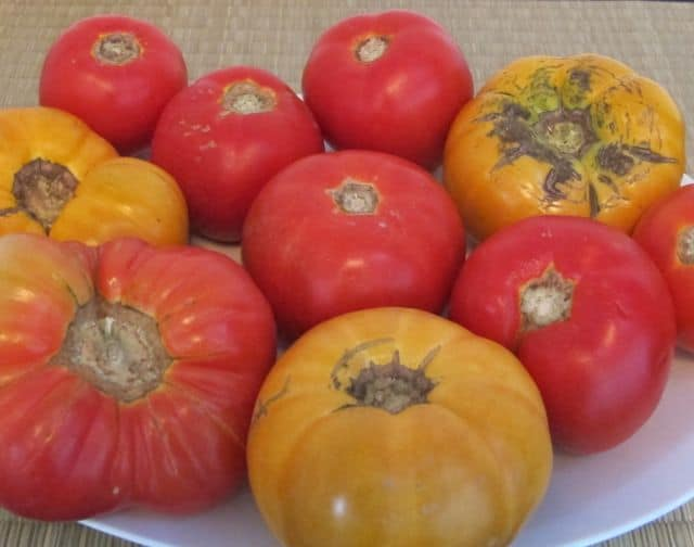 heirloom tomatoes, types of tomatoes, farmers market tomatoes