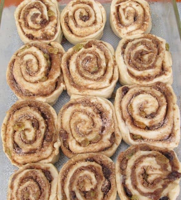 cinnamon rolls in pan before baking