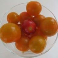 Fresh Tomato Recipes & Tips