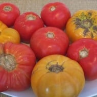 Peel and Seed Tomatoes the Easy Way