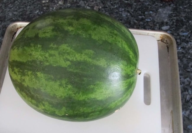 cutting watermelon on board in a rimmed cookie sheet