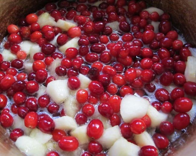 cranberry chutney recipe