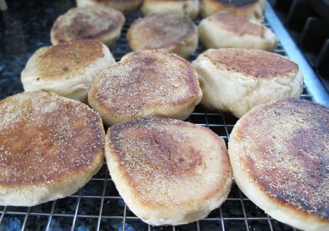 recipe for crumpets or English muffins