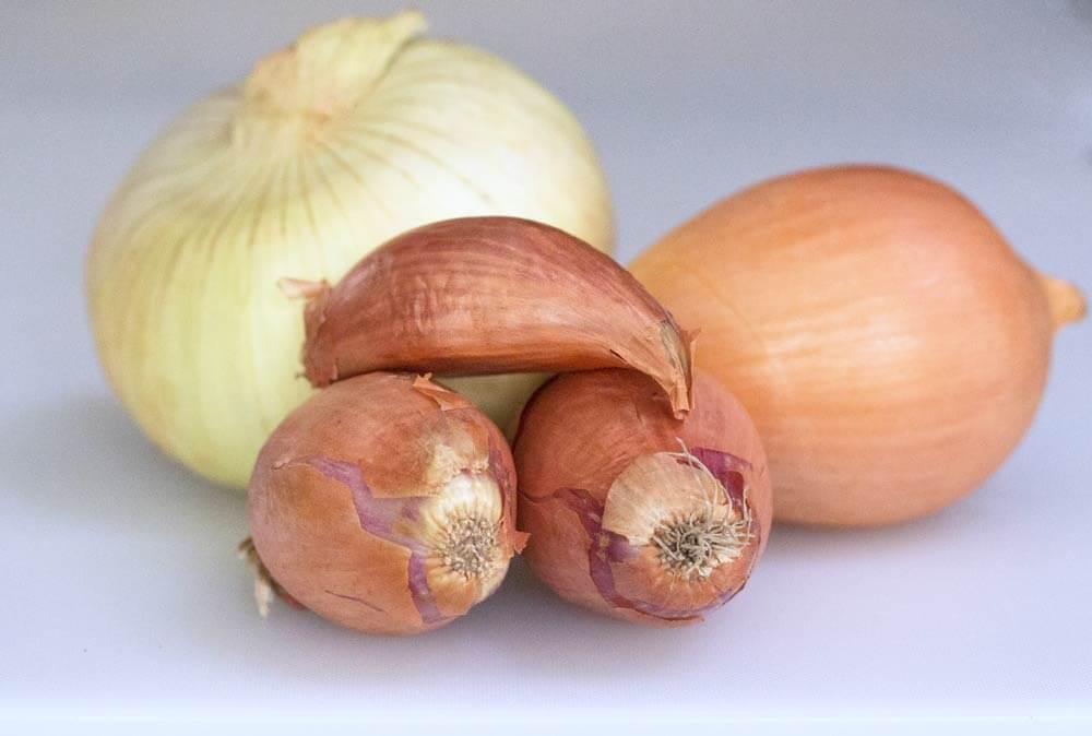 Onion alternatives - shallots and vidalia onion with yellow onion