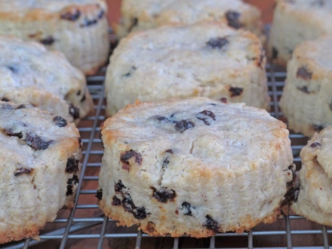 Currant scones cooling on a wire rack.