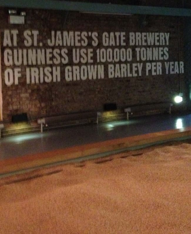Guinness beer brewery