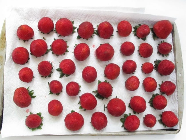 strawberries stored in refrigerator stay fresh
