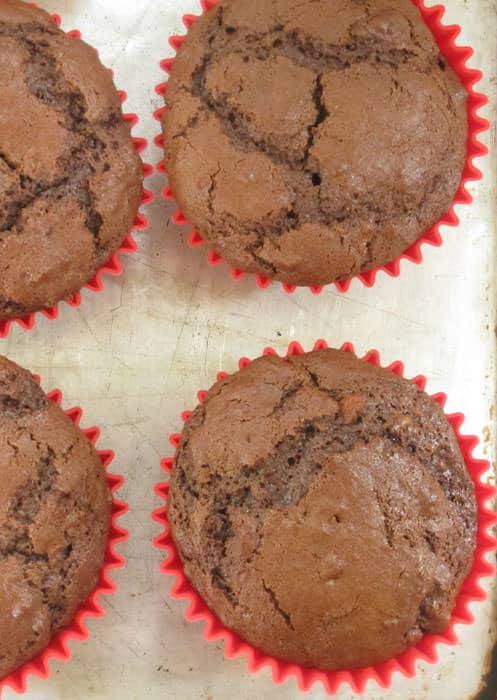 You can carry jumbo chocolate muffins to picnics, pot lucks, and games.