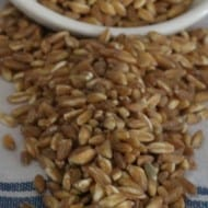 Differences Between Farro, Freekeh, & Wheatberries?