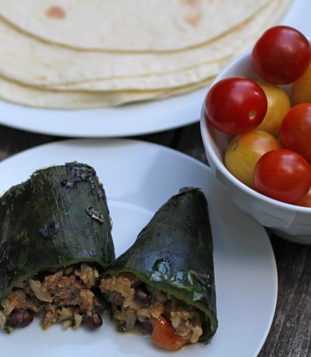 Easy Stuffed Poblano Peppers with beef, rice, and beans | Mother Would Know