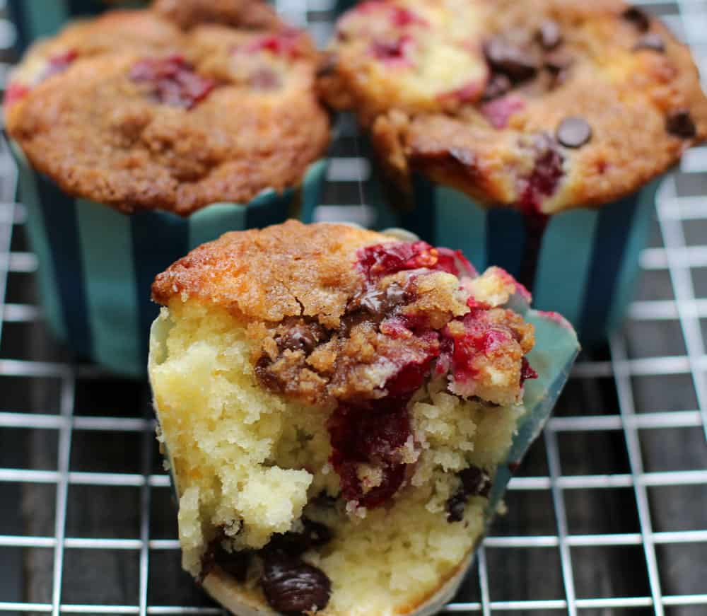 Cranberry Chocolate Chip Muffins with Streusel Topping | Mother Would Know