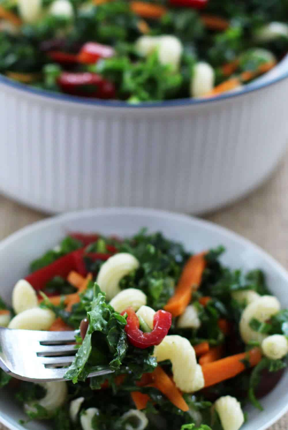 Weeknight kale pasta salad - a simple and colorful salad | Mother Would Know