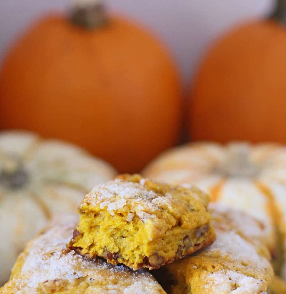 Sugar-topped pumpkin pecan scones are a delicious and easy treat | Mother Would Know