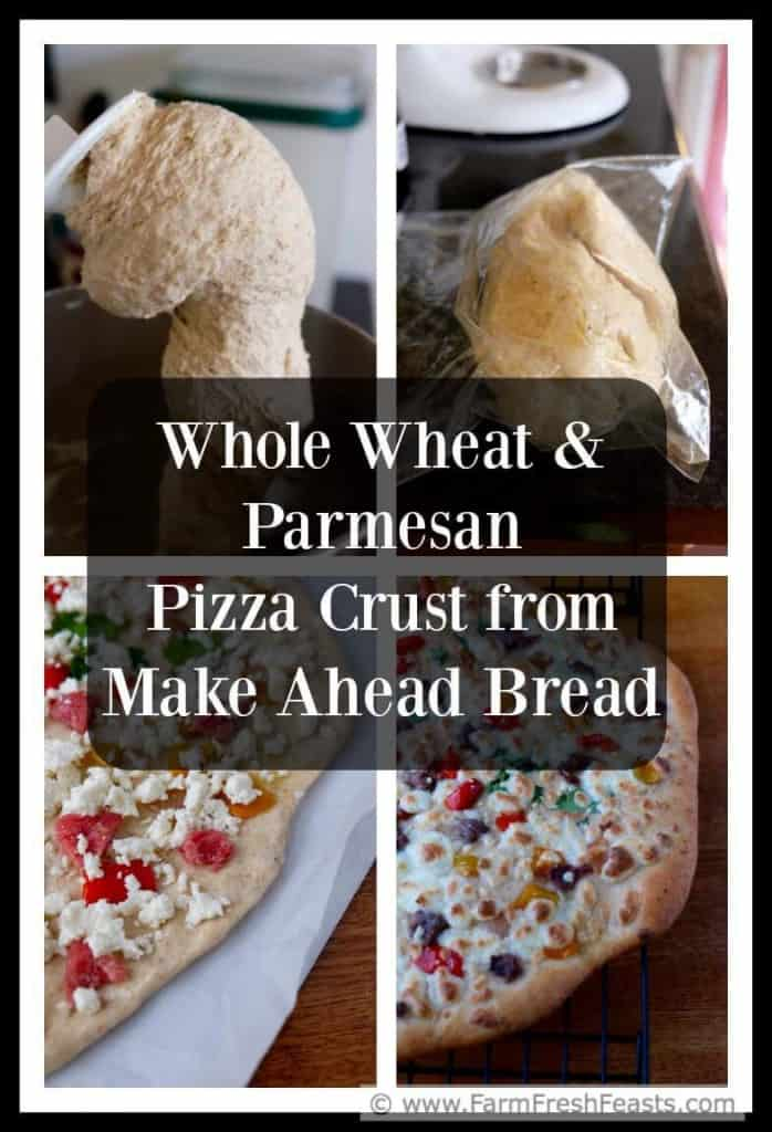 Whole wheat parmesan pizza crust from Mother Would Know