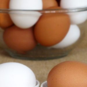 Why Do Brown Eggs Cost More Than White Eggs?