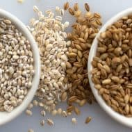 What is the Difference Between Pearl and Hulled Barley?